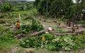 Haïti : la FAO distribue des semences pour aider les agriculteurs en vue de la récolte hivernale