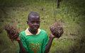 21 Mars: Journée internationale des forêts