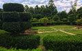 Haïti/Environnement : Jardin Botanique des Cayes, attrait et Vocation
