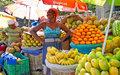 Les Dossiers du mois n°8 - Autonomisation économique des femmes en Haïti : un défi à relever