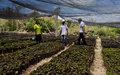 Lambert Wilson, un « acteur écologiste » à la rencontre des paysans du Sud d'Haïti